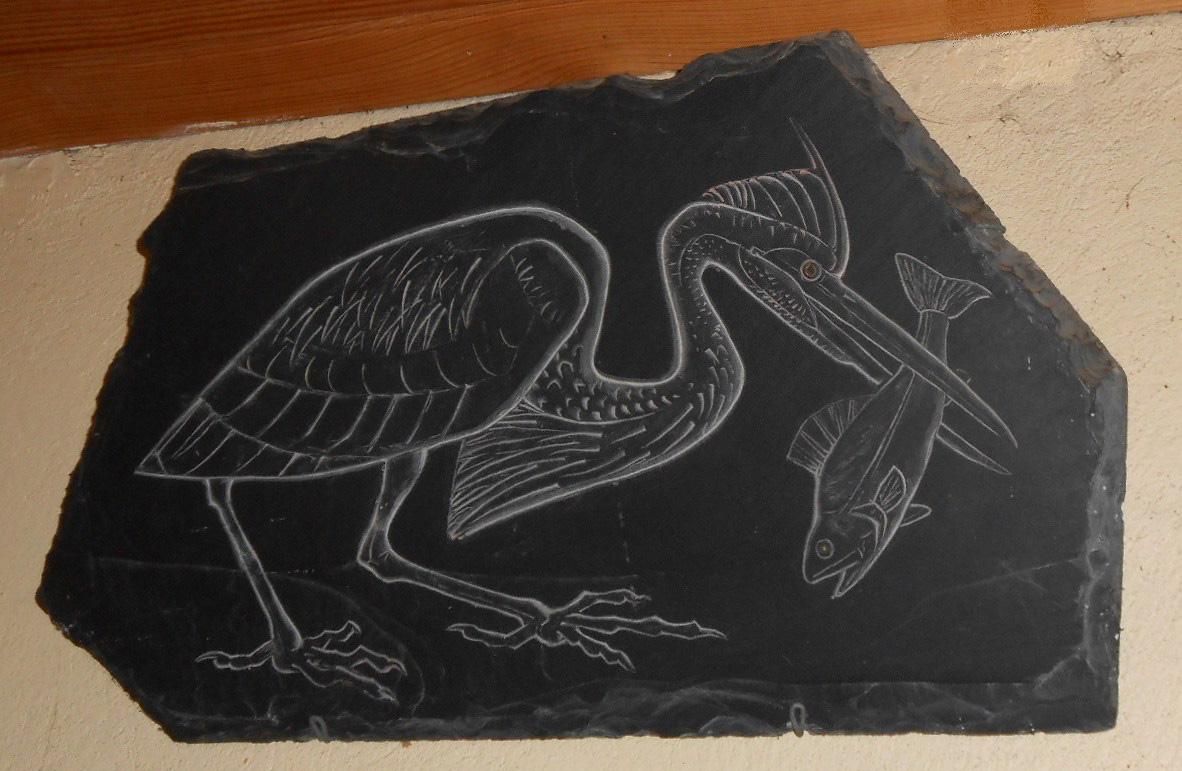 Oiseau pecheur ardoise 1 a